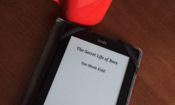 La vita segreta delle api – Sue Monk Kidd