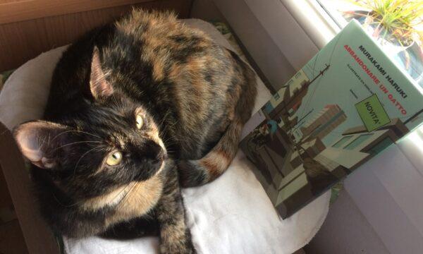 Abbandonare un gatto – Haruki Murakami