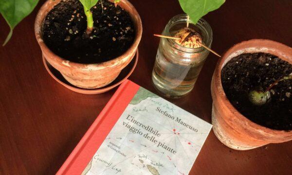 L'incredibile viaggio delle piante – Stefano Mancuso